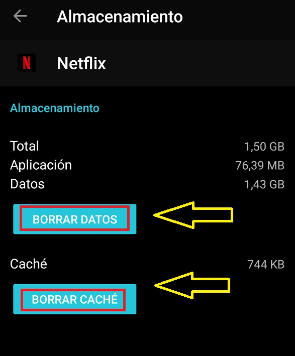 borrar almacenamiento netflix app