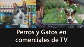 Perros y Gatos (y otros animalitos) en la Publicidad – Dogs and cats in TV Commercials